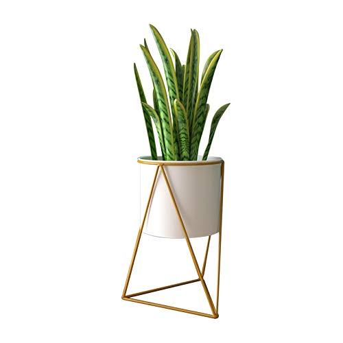 WUHUAROU Maceta de metal para plantas de pie con maceta, de escritorio, con soporte para succulents, hierbas, cactus, alféizar de la ventana, decoración de bonsái, color blanco