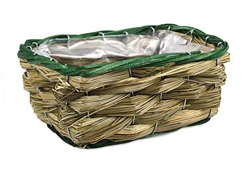 Tin Tours Panier pour Plantes en mer et Panier pour Pot de Fleurs 22 x 15 x 10 cm