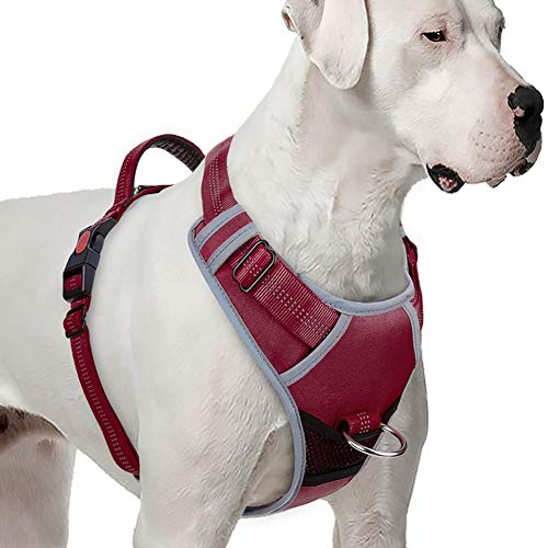 ThinkPet No Pull Harness Breathable Sport Harness - Reflective Padded Dog Safety Vest with Top Handle, Back/Front Clip for Easy Control XXL Red