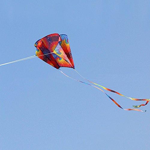 Kinder Drachen Mini Regenbogen Drachen 52 * 63cm eine Linie Stranddrachen mit Langen Schwanz Bunt Lenkdrachen Smartglider Hohe Qualität Drachen steigen lassen draussen für Kinder und Erwachsene