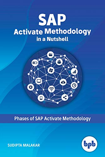 SAP: Activate Methodology in a Nutshell (English Edition)