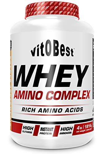 WHEY AMINO COMPLEX 4 lb FRUTAS BOSQUE - Suplementos Alimentación y Suplementos Deportivos - Vitobest