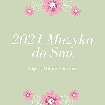 2021 Muzyka do Snu: Odgłosy Natury Antistress
