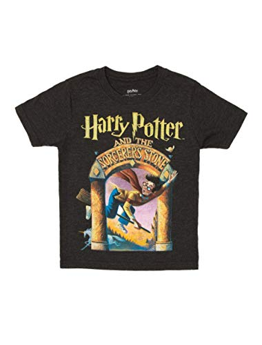 Libro Harry Potter 7 Años marca Out of Print