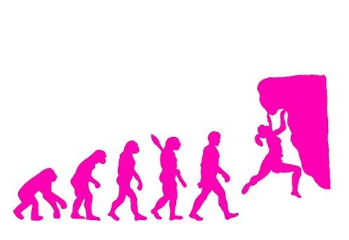 EVOLUCION ESCALADA FEMENINA .- ROSA BRILLO -. 29x12cms. ( MARB )