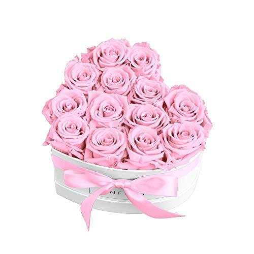 Infinity Flowerbox Heart Konservierte Rose, Bridal Pink, Large