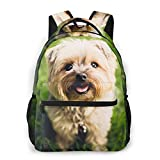 Adorable Animal Breed Canine Print Custom Unique Casual Backpack School Bag Travel Daypack Gift