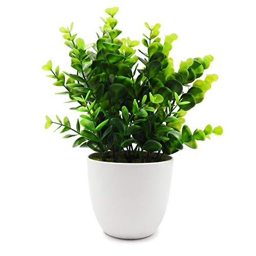 TOSSOW künstliche Pflanzen gefälschte Pflanze mit vase für hausgarten Dekoration Mini Kunststoff sträucher Pflanzen (Runden)