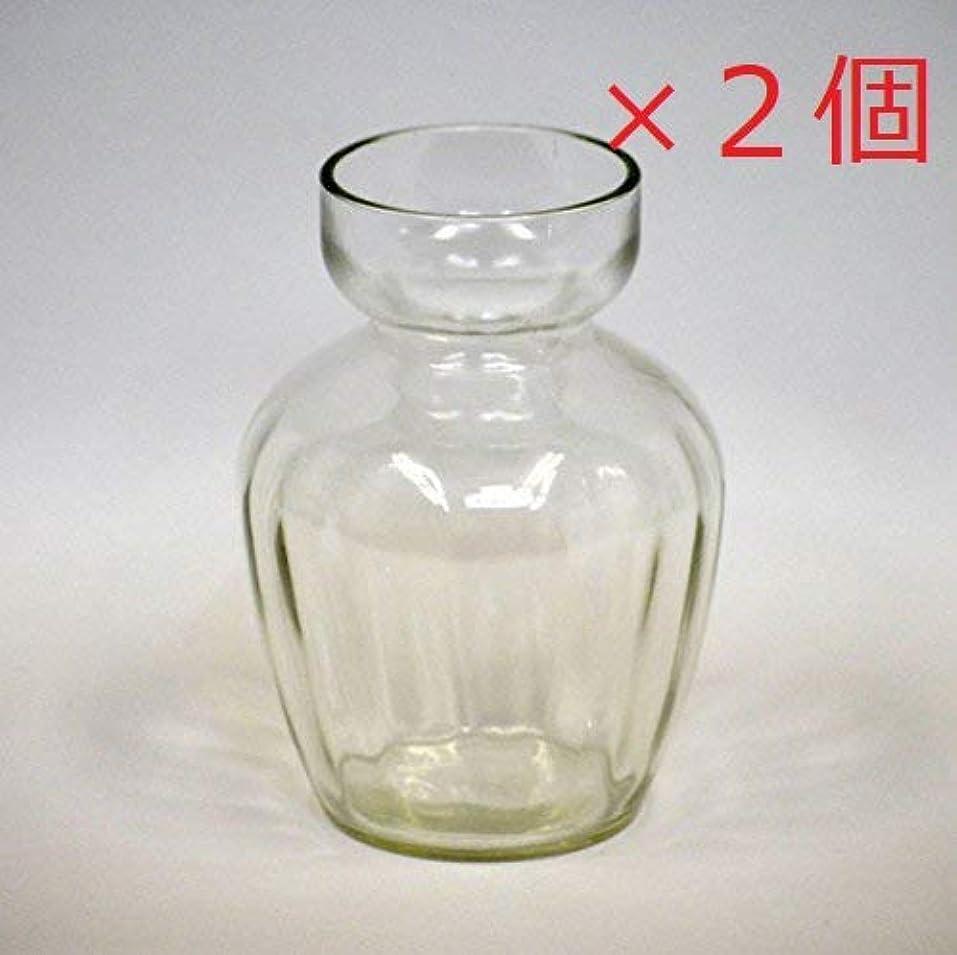 略奪利用可能動揺させるフロンティアガラス ヒヤシンスガラスポット 1球用 フロンティア 2個セット