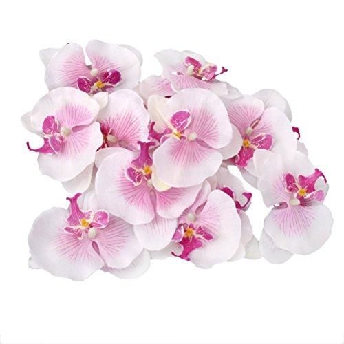 VORCOOL Künstliche Blumen Schmetterling Orchidee 9 cm Seide Blume Blüten DIY Hochzeit Party Haus Deko 20 stücke