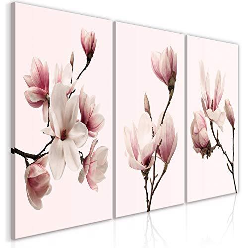 murando - Bilder Blumen 120x60 cm Vlies Leinwandbild 3 TLG Kunstdruck modern Wandbilder XXL Wanddekoration Design Wand Bild - Magnolien b-C-0354-b-e