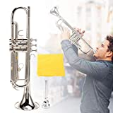 Pinsofy Exquisite Professional Durable Trumpet, Musical Instrument, for Beginners Trumpet Lovers