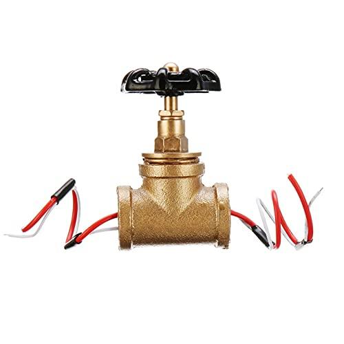 Fesjoy Interruptor de luz de válvula de Parada, Interruptor de luz de válvula de Parada de 3/4 Pulgadas con Cable Vintage Steampunk Lámpara Industrial Estilo Loft Válvula de Hierro Accesorios de