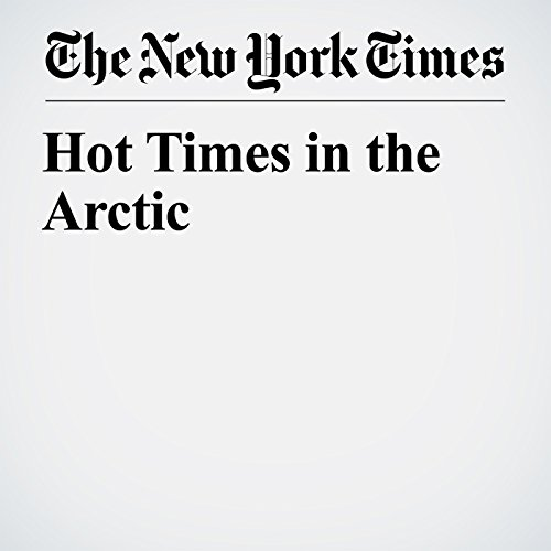 Hot Times in the Arctic copertina