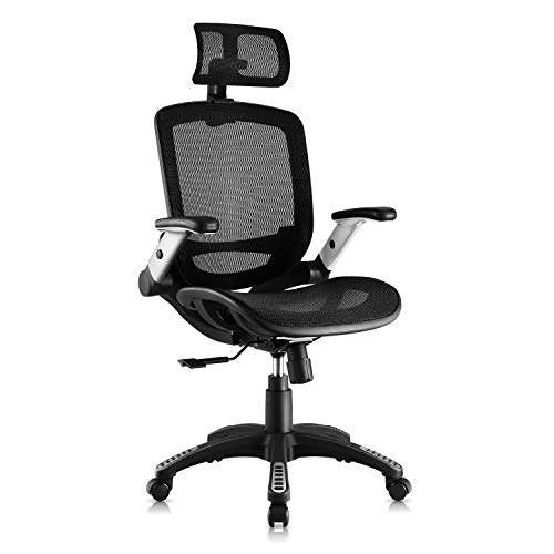 Gabrylly Office Mesh Chair, Ergonomic Desk Chair - Adjustable Headrest with Flip-Up Arms, Lumbar Support, Swivel Computer Office Chair for Home Office