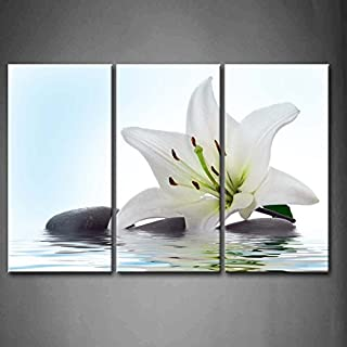 3 Panel Wall Art White Madonna Lily and Stone in Water Painting The Picture Print On Canvas Flower Pictures for Home Decor Decoration Gift Piece (Stretched by Wooden Frame,Ready to Hang)