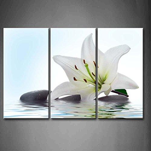 First Wall Art - Lilie Blumen Leinwand Bilder Weiße Blume und Steine im Wasser Wandbild Poster 3Panel Modern Pflanze Dekorationen Für das Wohnzimmer,Büro,Küche,Badezimmer,Schlafzimmer