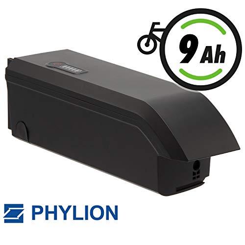 Phylion Fahrradakku SF-06 Joycube 48V 8,7Ah JCEB480-8.7 für E-Bikes Pedelecs von Fischer, Keiler, Lombardo u.a.