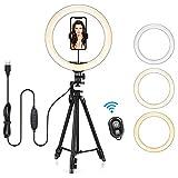 Anillo de Luz Trípode LED 13', Aro de Luz con Trípode Soporte para Tableta/Móvil con Control Remoto Bluetooth, 3 Modos Luz + 10 Niveles Brillo para Tiktok Live Selfie Volg Youtube