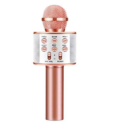 Altavoz Con Karaoke  marca ONLYU