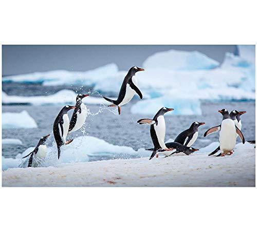 HU0QWPKU Netter Pinguin Auf Dem Gletscher Puzzle Personalisieren Sie Home Decoration Casual Games Geeignet Für Kinder Erwachsene,1000Stück