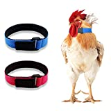 GABraden 2 Pack Anti Crow Rooster Collar No Crow Noise Neck Belt for Roosters Cockerel Velcro Nylon
