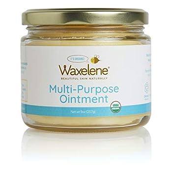 Waxelene Multi-Purpose Ointment Organic Large Jar