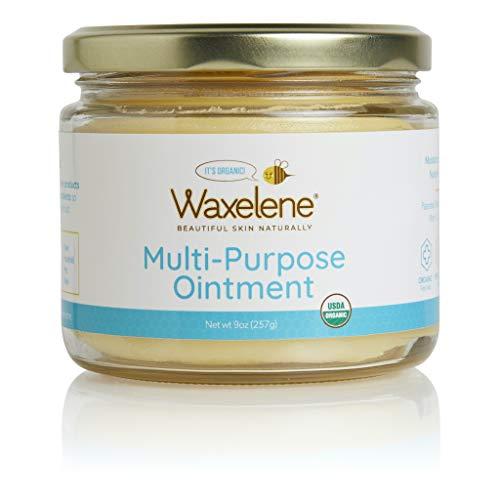 Waxelene Organic Soothing Botanical Jelly Petroleum Free Ointment Large Jar