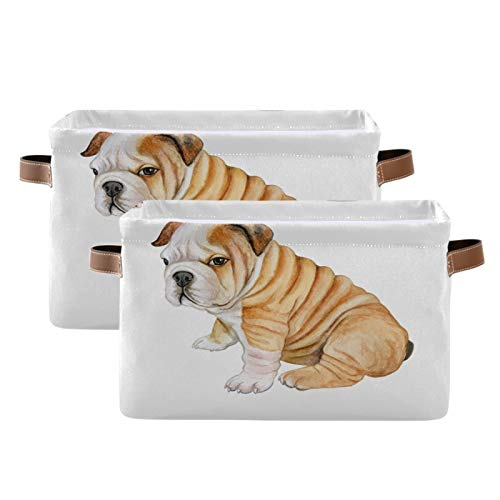 HousingMart Storage Bins Animal French Bulldog Pattern Storage Basket Collapsible Cube Rectangle with Handle Storage Box for Shelves Home Office Closet 2 Pack