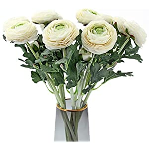 Artificial Ranunculus Flowers with Real Touch Stem, Silk Ranunculus Flowers(10 Pack) (White)