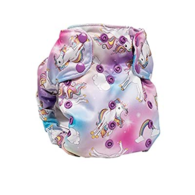 Cloth Diaper – Smart Bottoms Smart One 3.1 – All-in-One – 100% Organic Cotton Interior – 10-35lbs … (Chasing Rainbows)
