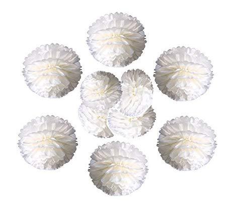 Lieblingsmomente 10St. Pompoms in Elfenbein (Ivory-Weiß) - Pastellfarben – Hochzeit, Geburtstag, Party-Dekoration UVM. Indoor und Outdoor (Elfenbein)
