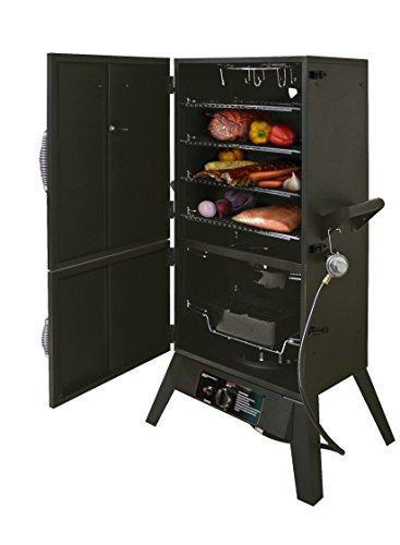 Smoke Hollow 38202G Propane Gas Smoker by Masterbuilt, 2-Door, 38