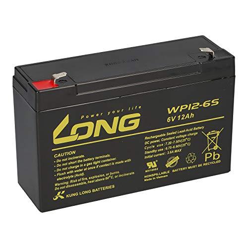 Batteria compatibile 3-FM-10 20HR 3 FM 10 3FM10 6V 12Ah AGM piombo come 9Ah, 9,5Ah, 10Ah Kung Long