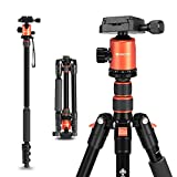 "GEEKOTO 58"" Ultra Compact Lightweight Aluminum Tripod with 360° Panorama Ball Head for DSLR, Monopod,..."