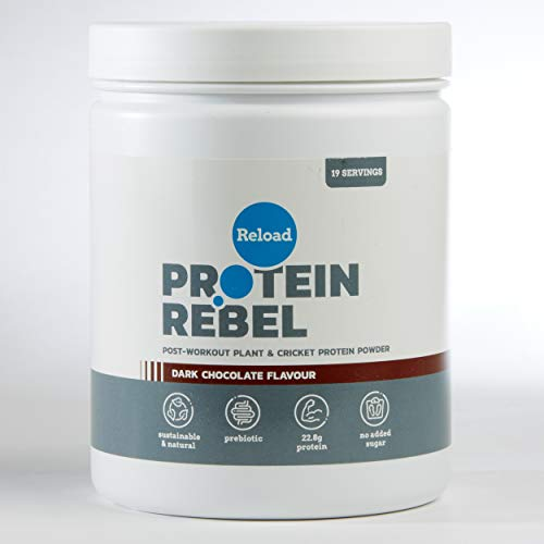 Reload Post Workout Protein Powder - Made from Pea Protein and Cricket Protein - 19 Servings (Dark Chocolate)