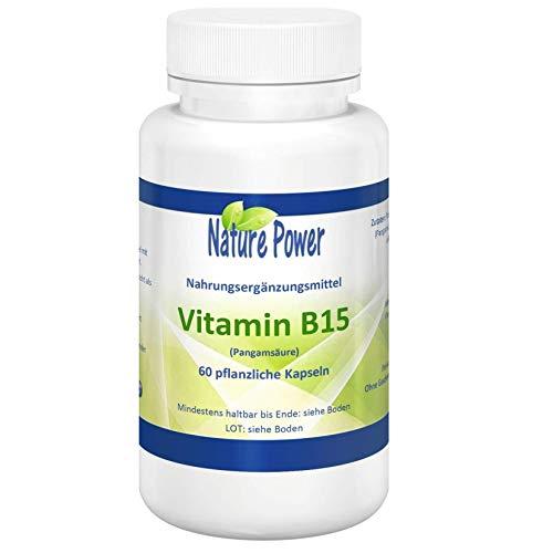 Vitamin B15 | Pangamsäure | Dimethylglycin | von NATURE POWER | 200 mg pro Kapsel | 60 pflanzliche Kapseln | gentechnikfrei und vegan