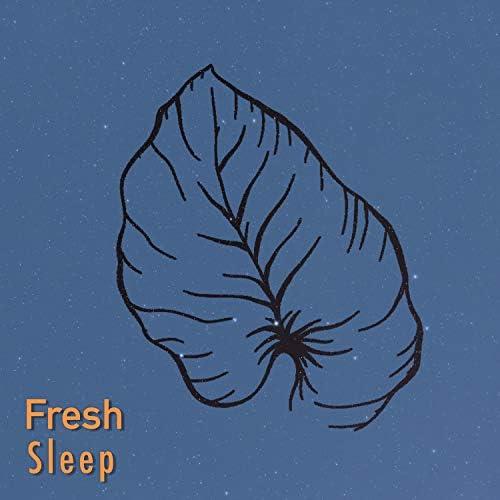 Deep Sleep Music Therapy & White Noise Sleep Sounds