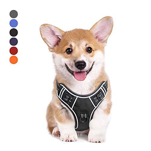 Hundegeschirr Verstellbar Geschirr Hund Brustgeschirr Reflektierendem Dog Harness Ausbruchsicher Atmungsaktiv Hundegeschirr für Kleine Mittlegroße Kleine Hunde Schwarz S