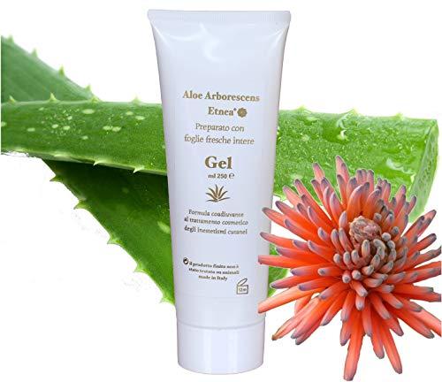Gel Puro Aloe ARBORESCENS 100%, Biologico, Vegano, Made in Italy, Inestetismi Cutanei - 250 ml