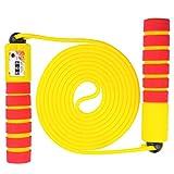 Blesser Springseil Kinder Erwachsene Damen Jump Rope Kabel Crossfit Fitness Gym Gewicht Boxen...