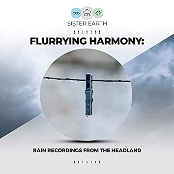 ! ! ! ! ! ! ! Flurrying Harmony: Rain Recordings from the Headland ! ! ! ! ! ! !