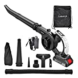 Kingnova Cordless Leaf Blower 20V 2.0A Sweeper Vacuum for Blowing Leaf, Clearing Dust and Small Trash, Cleaning Corner in Car and Home, 2 in 1 Cordless Vacuum Cleaner Mini Cordless Blower