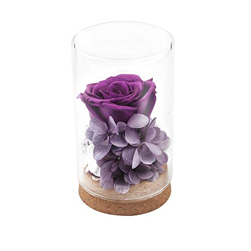 RAGZAN Handmade Preserved Flower Rose,Never Withered Roses,Upscale Immortal Flowers,Eernal Life Flowers for Love Ones,Gift for Valentine