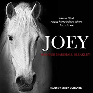 Joey audiobook cover art