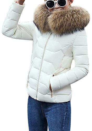 OMZIN Warm Daunenjacke Steppjacke Damen Warm Kurzjacke Übergangsjacke mit Pelzkapuzen Reißverschluss Warm Weiß XL