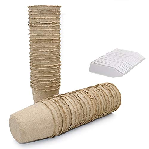 KINGLAKE 100 macetas pequeñas de fibra redonda biodegradables de 6 cm con 100 etiquetas para plantas de plástico, color blanco, 1 x 5 cm