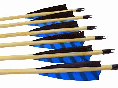 """Arrowforge - 12 Stück Holzpfeile Pfeile 4"""" Shield Barred Blaue Leitfeder"""