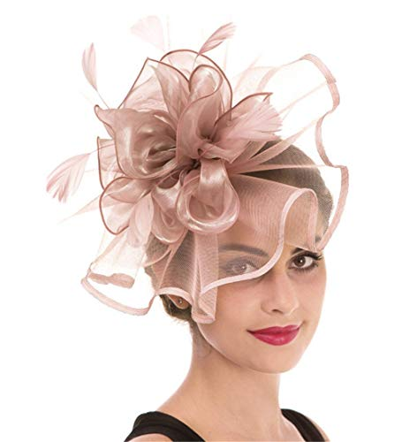 Haojing Fascinator Feather Mesh Flower on a Headband and, Hj2-pink, Size Medium