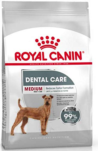 Maltbys' Stores 1904 Limited 10KG ROYAL CANIN MEDIUM DENTAL CARE ADULT DOG FOOD (CODE S/O)